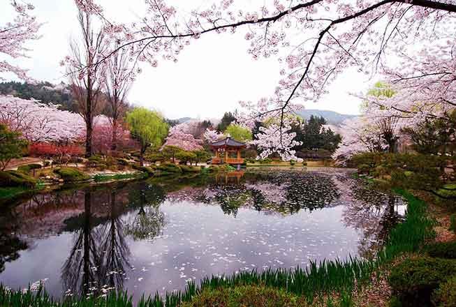慶州普門湖必去景點