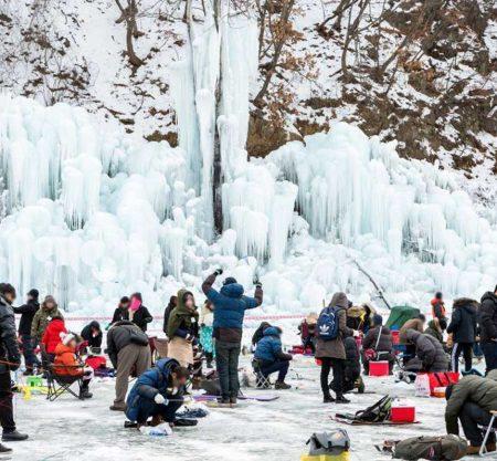 韓國清平雪花鱒魚節一日遊行程