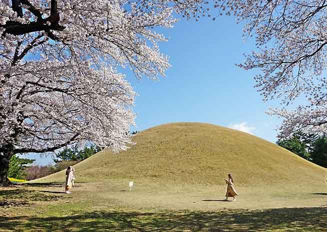 慶州大陵苑必去景點