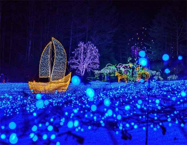 韓國晨靜樹木園必去景點