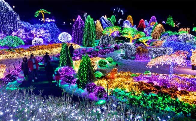 晨靜樹木園夜燈必去景點