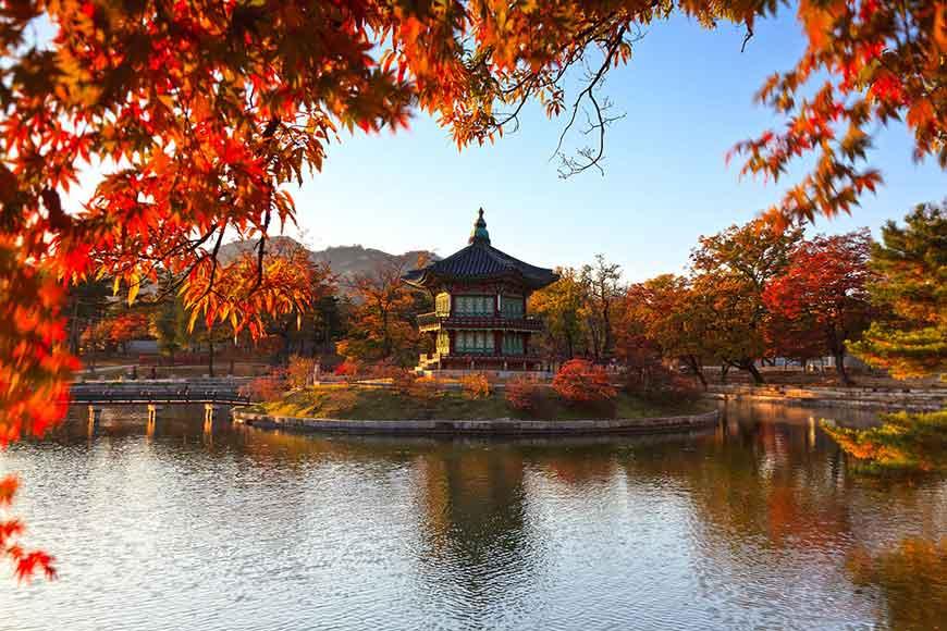 韓國紅葉景點-景福宮