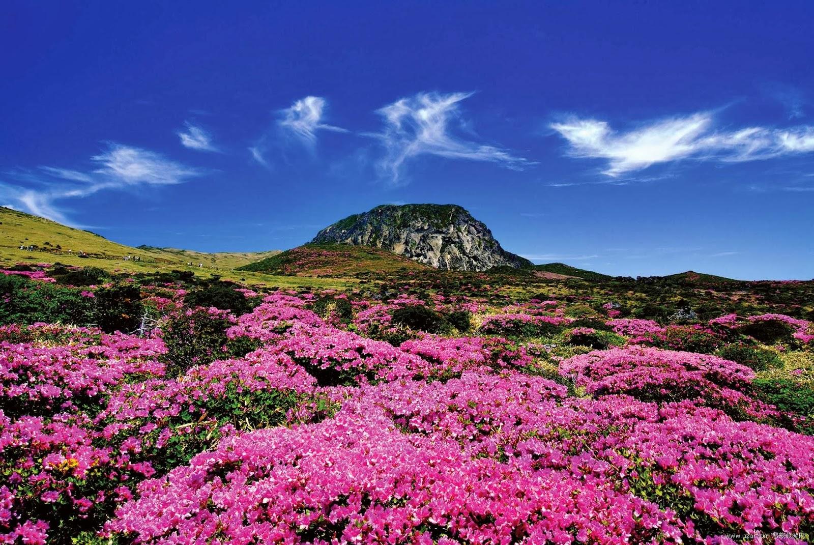 濟州島漢拿山