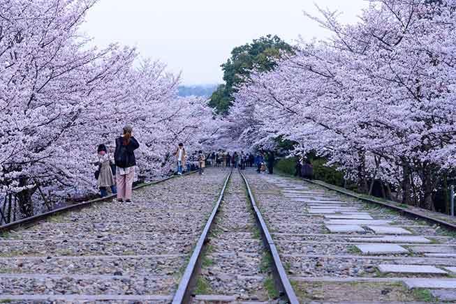 京都蹴上鐵路必去景點