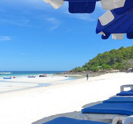芭堤雅珊瑚島雙體帆船一日遊行程
