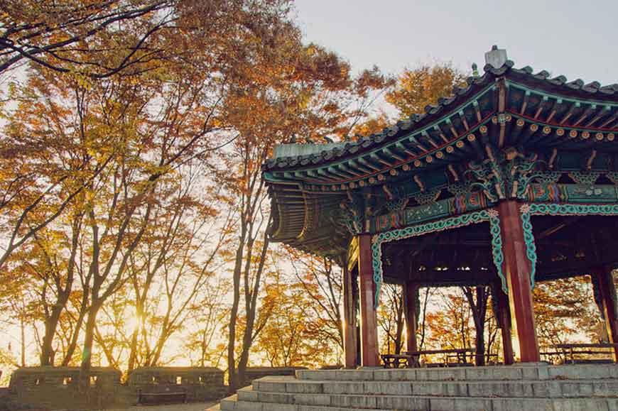 韓國紅葉景點-南山公園