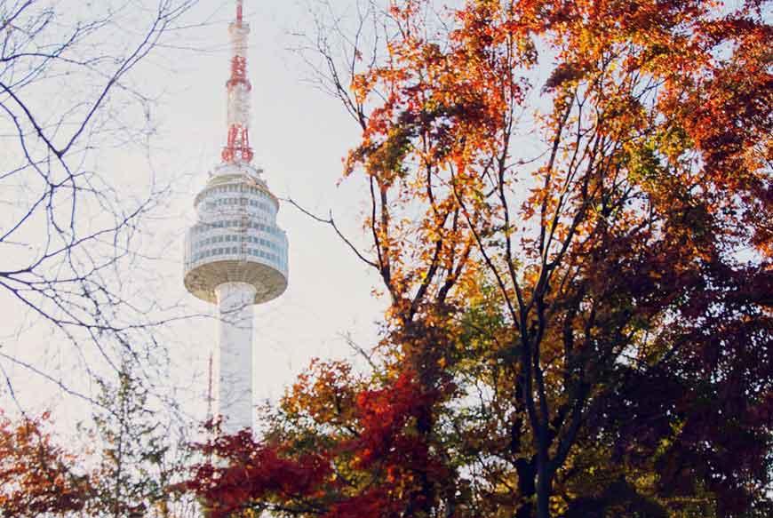 韓國紅葉景點-首爾塔