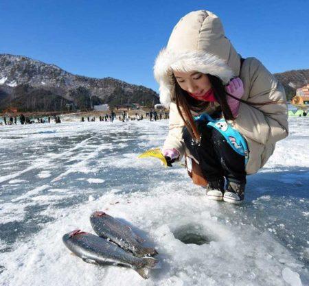 平昌鱒魚節冰釣一日遊行程