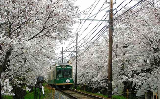 嵐山電車必去景點