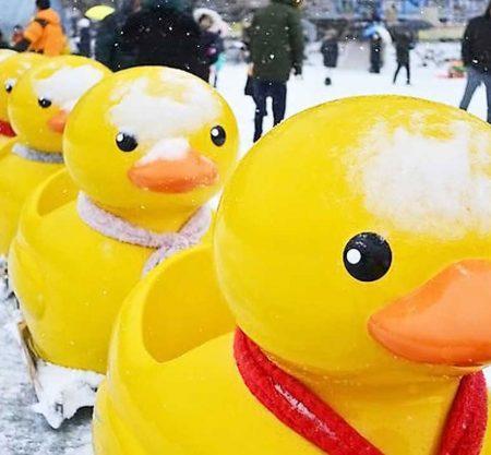 韓國抱川山井湖雪橇慶典一日遊行程