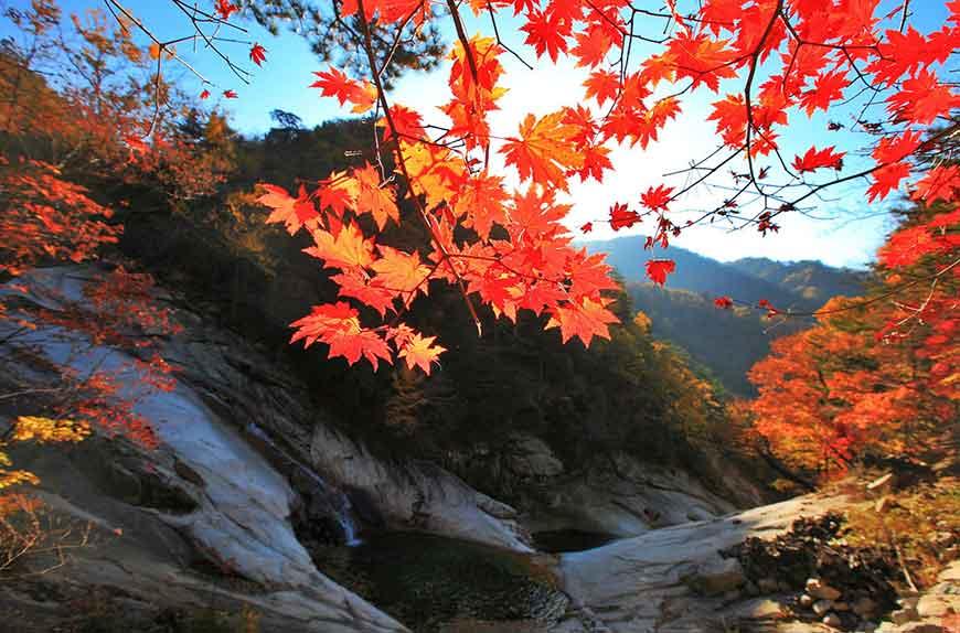 韓國紅葉景點-雪嶽山國立公園