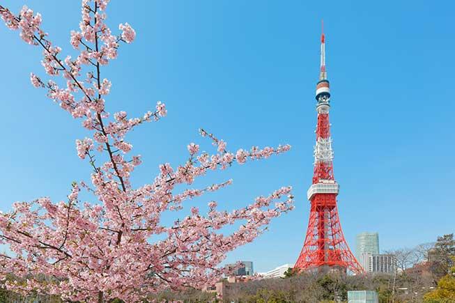 東京芝公園必去景點
