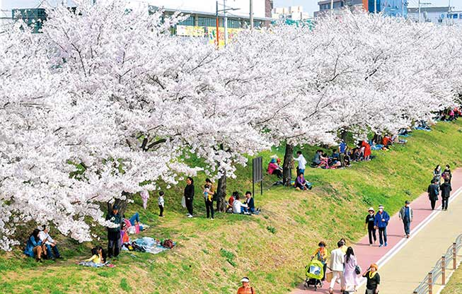 韓國大邱壽城池必去景點