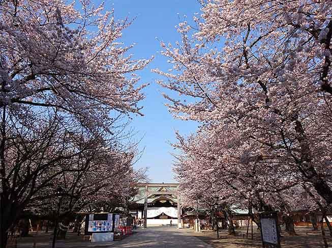 東京靖國神社必去景點