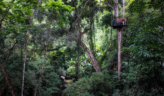 清邁叢林飛索必去景點