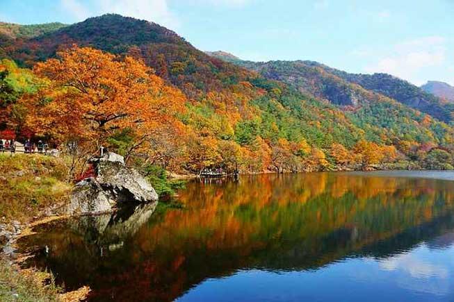 注山池紅葉湖景必去景點